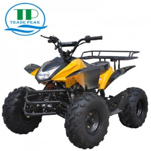ATV CART 125cc-2
