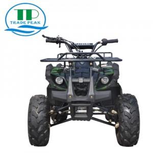 រទេះ ATV 125cc-4