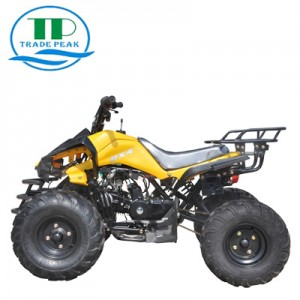 ATV CART 125cc-3