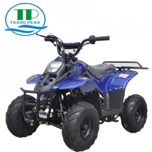 ATV CART 110cc